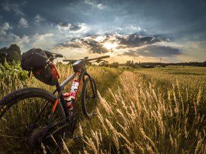 Bicicletas eléctricas de carretera e híbridas
